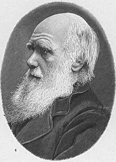 Charles Darwin (H.F. Helmolt (ed.): History of the World. New York, 1901/Courtesy of the University of Texas Libraries, The University of Texas at Austin.